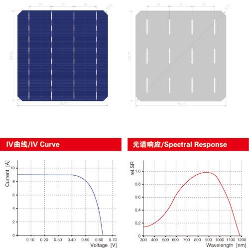 单晶电池片回收(4BB)